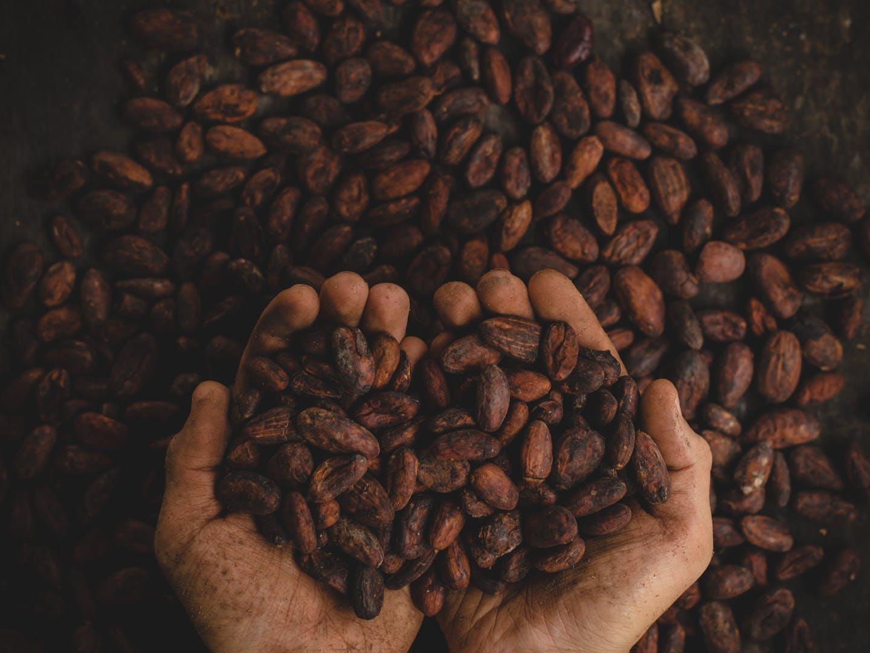 NEOH Ingredients / NEOHpedia: Cacao